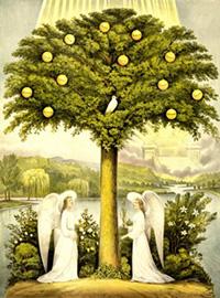 tree_img01